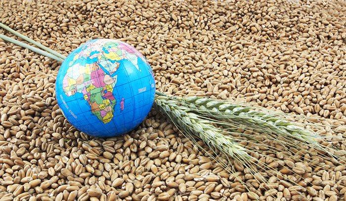 Svetovni dan hrane in svetovni dan boja proti revščini