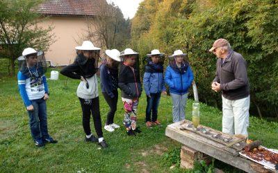 Obiskali smo čebelarja